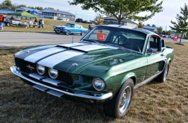 Trackside Mustang, Shelby & All Ford Car Show